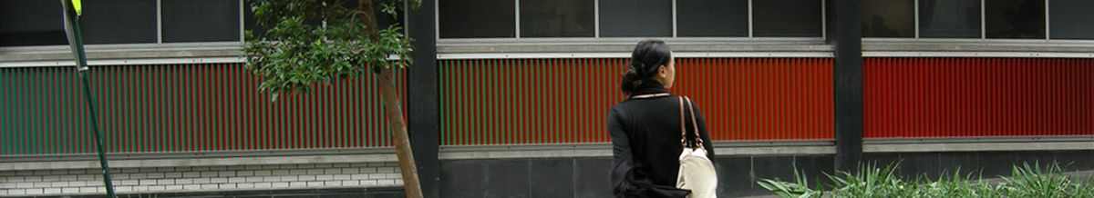 A photograph of a colourful vertical artwork on the facade of a building at UTS