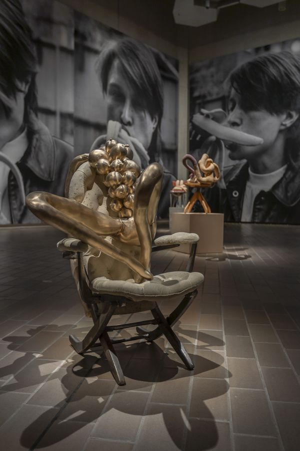 Installation view of Project 1: Sarah Lucas exhibition