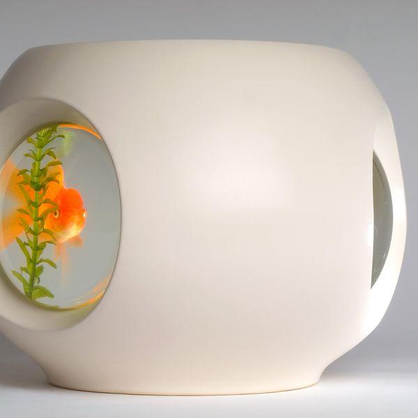 Workshopped Fish Bowl