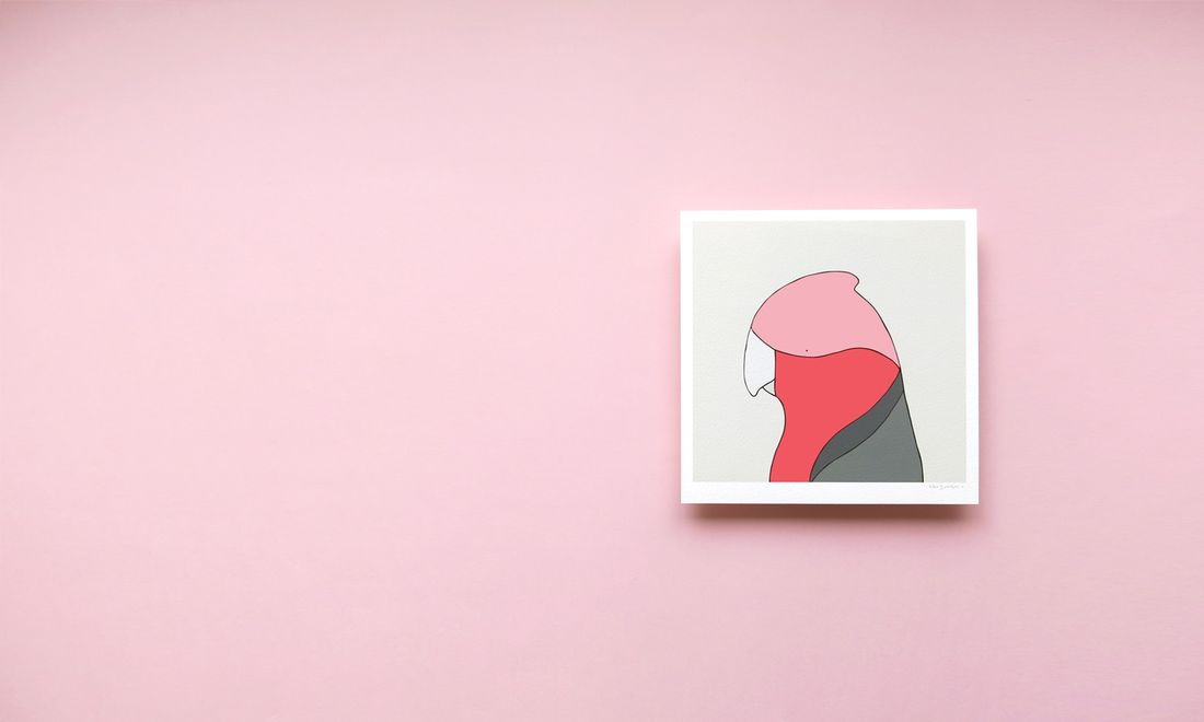 Galah by Egg Picnic. Image: supplied