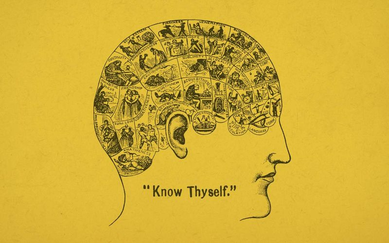 "Phrenology diagram from the 1800's: illustrated human head divided up into sections, each one labelled with an emotion. A caption reads ""Know thyself""."