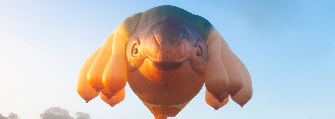 image of Skywhale hot air balloon floating